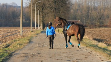 paard rijden op de openbare weg
