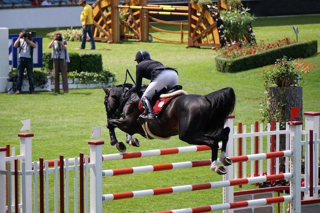 Paardenliefhebbers kijken uit naar Flanders Horse Expo 2019